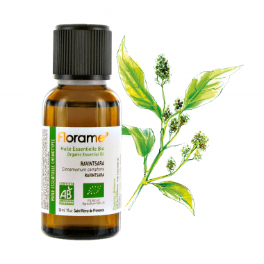 Ravintsara Organic